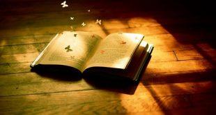 """Bàn luận về: """"Cái gốc của sự học là học làm người"""""""