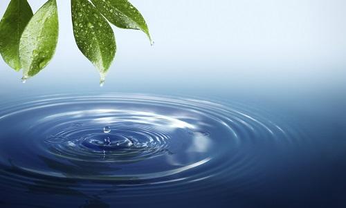 Không ai uống nước để tự tử bao giờ