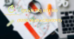 Quản trị rủi ro: Khái niệm và 3 Nội dung quan trọng